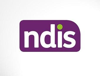 NDIS small logo