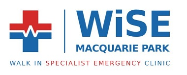 WiSE medical clinic logo
